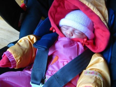 http://lestourtereaux.free.fr/blog/decembre-2009/alizee-auto.jpg