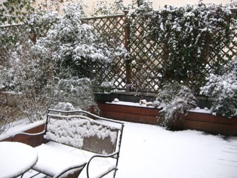 http://lestourtereaux.free.fr/blog/decembre-2009/neige.jpg